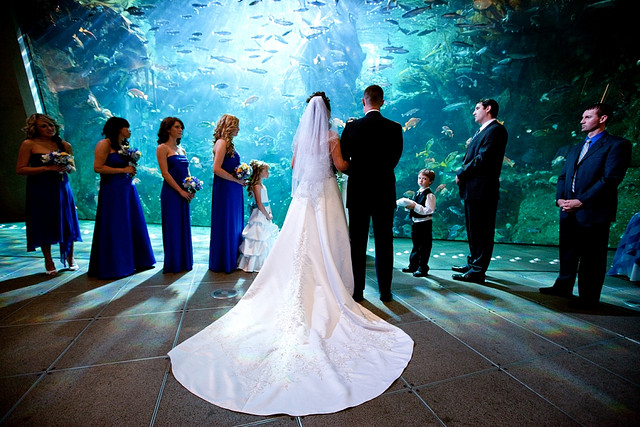 Очень красивые фото свадьбы
