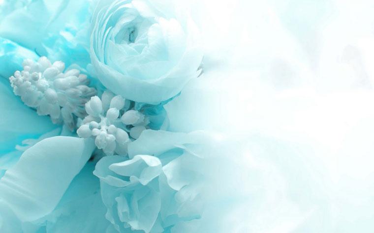 Свадьба в цвете холодная бирюза