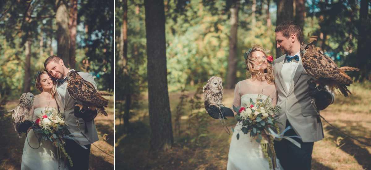 sovy-v-svadebnoj-fotosessii Удивительная свадебная фотосессия с живыми совами