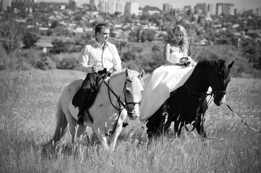 svadebnaya-fotosessiya-na-loshadyah Свадебная фотосессия с лошадьми