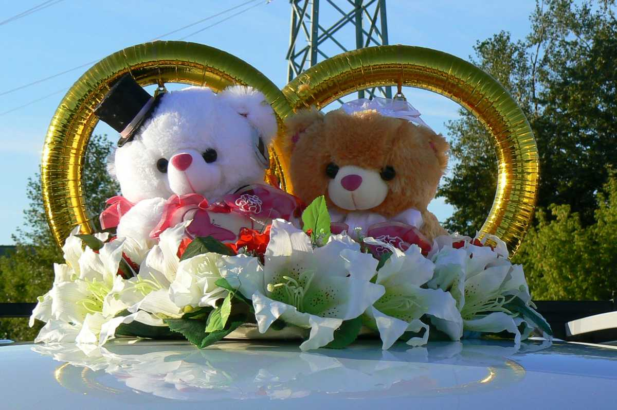 svadebnye-koltsa-dlya-avto-s-igrushkami Виды декоративных колец для декора свадебного кортежа
