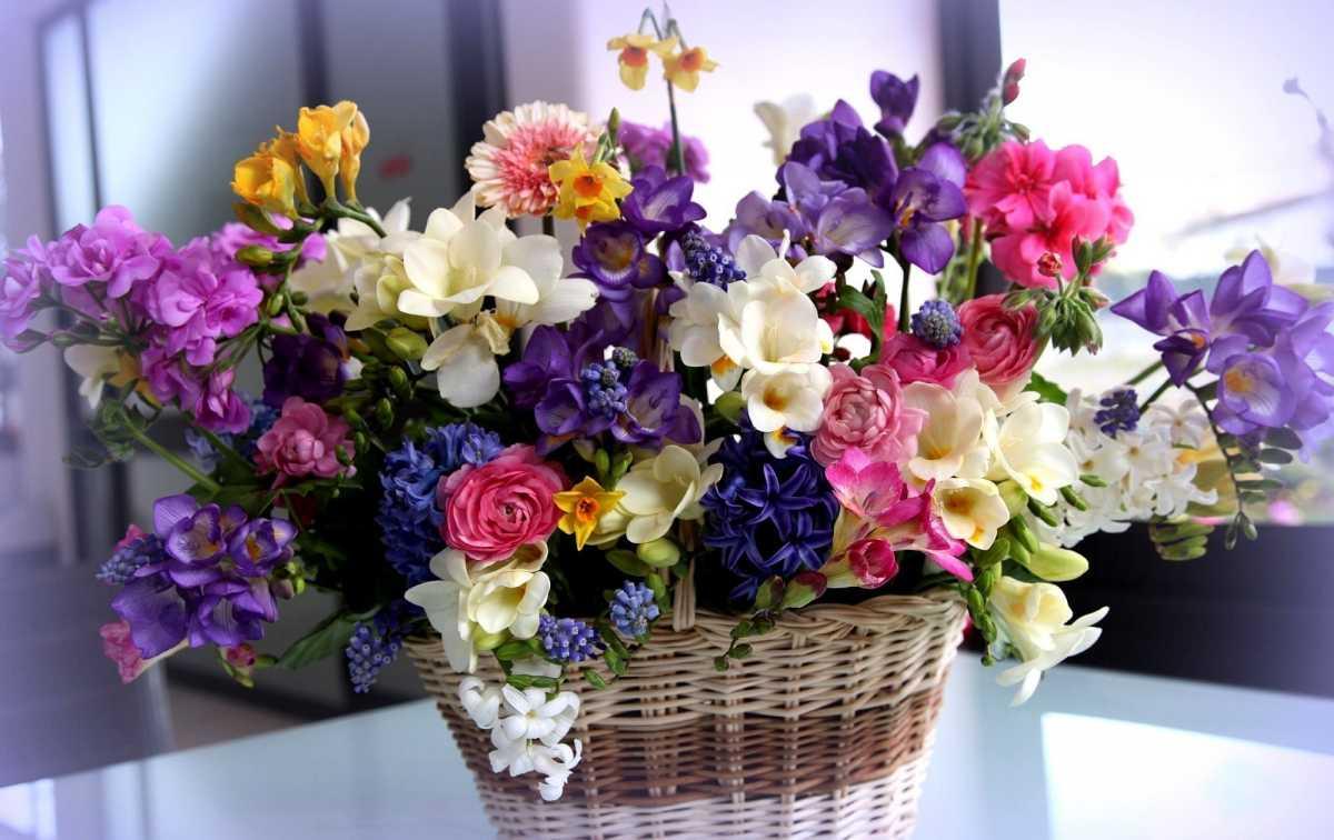 darim-molodozhenam-tsvety Выбираем цветы в подарок молодоженам на свадьбу