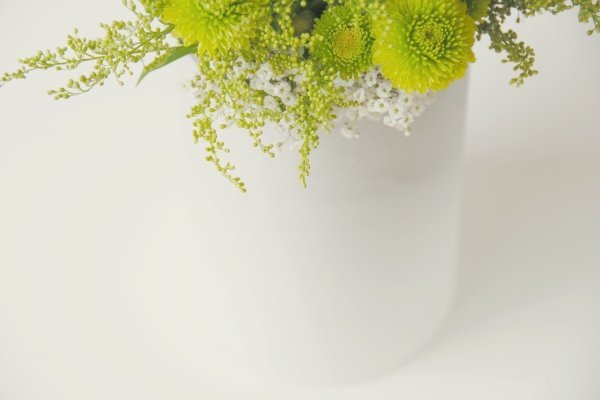 prostye-belye-vazy-na-svadbu ТОП-10 бюджетных вариантов декора ваз на свадьбу