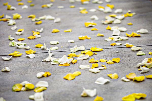 yarkaya-limonnaya-svadba-5 Лимонная свадьба в самый разгар лета, украсит любое торжество своей яркостью и позитивом