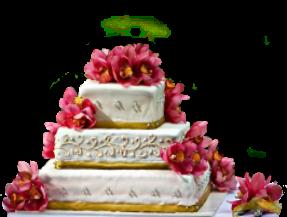 weddingcake Свадебные идеи и советы! Обсуждаем, сравниваем, выбираем и предлагаем.
